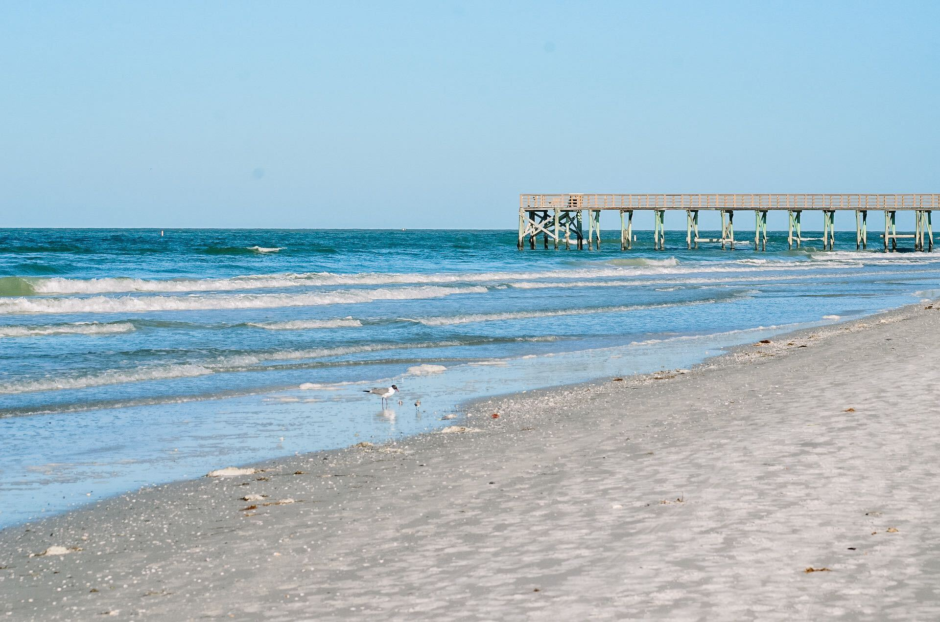 Discover St. Pete: The Sunshine City