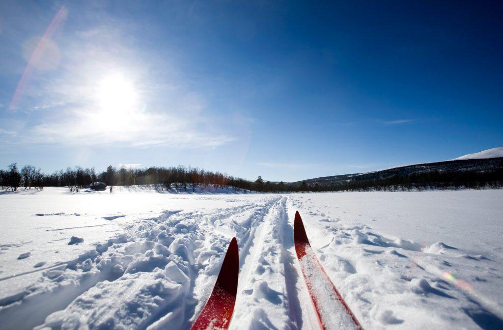 A cross country ski detail